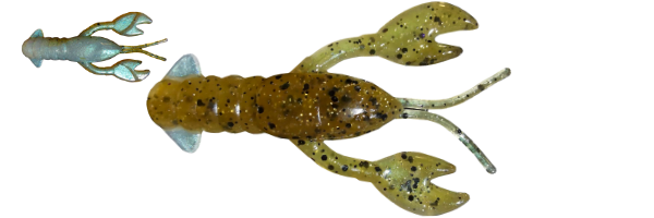 Lake St. Clair Goby (G006-032)